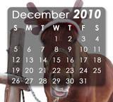 Th_december-2010-sm