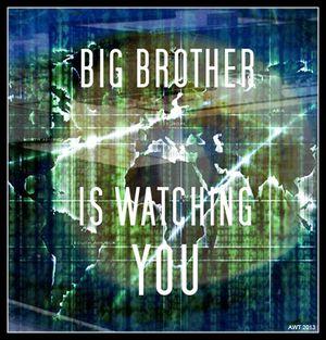 Big-Brother-Mash-Up_zps034e0ba7